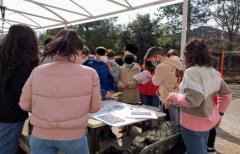 Actividades del Departamento de Juventud en el IES Matarraña para conmemorar el 8M