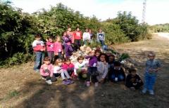 Los niños del Matarraña disfrutan aprendiendo en la Ecofiesta