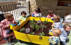 Las Escuelas de Educación Infantil 'Sagalets' de Monroyo, Fuentespalda, Valjunquera y La Portellada celebran el Día del Medioambiente