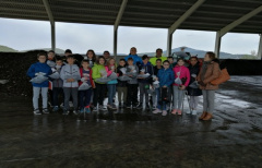 Alumnos de 6º A del colegio de Valderrobres visitan la planta de compostaje comarcal