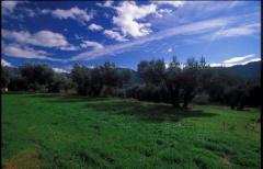 Los departamentos de turismo de las comarcas aragonesas han preparado una encuesta para los usuarios de los servicios turísticos, para conocer cuáles son sus inquietudes cuando en un futuro, reabran los establecimientos