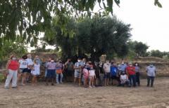 Exitosa presentación del proyecto 'Oliveras centenarias y singulares del Matarraña'