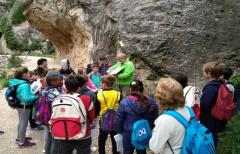 Los alumnos de los colegios del Matarraña participan en un Taller de interpretación del paisaje fluvial, organizado por la Comarca del Matarraña